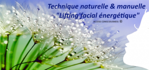 lifting-energetique-access-anaki-vannes-arradon
